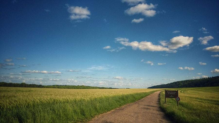 Road on grassy field against sky