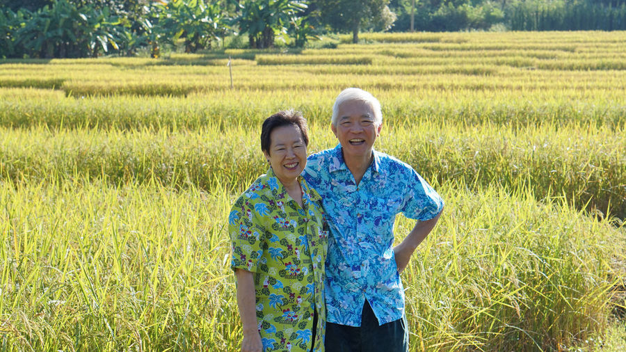 Asian senior elder couole hawaii shirts with agriculture rice farm