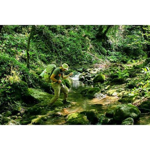 Me Rockstar Trekking Yalova yatakkaya travel trees green naturel naturelovers creek dere hikingtrail ağaç dere hiking yürüyüş kamp kamping