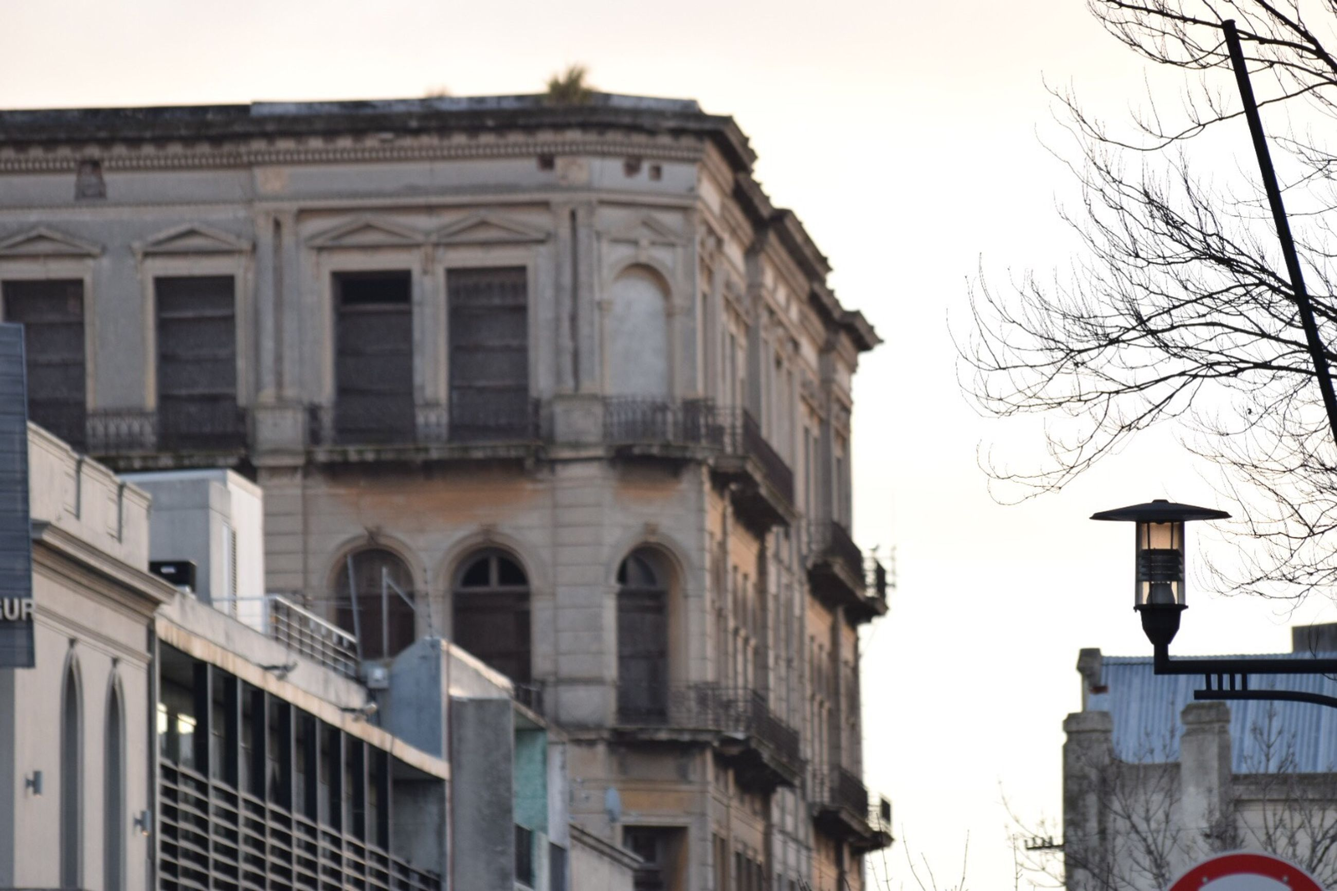 building exterior, architecture, built structure, building, sky, nature, no people, low angle view, day, outdoors, tree, city, bare tree, clear sky, window, residential district, history, plant, the past, street