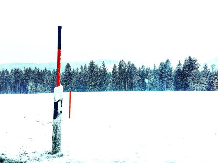 Germany Titisee Snow ❄ White Europe Cold Winter ❄⛄ Regional Germany My Travel Forest Baden-Württemberg