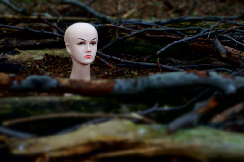 Close-up of mannequin in forest
