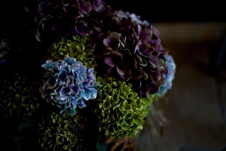 そろそろバラも飽きてきたかな?と思って(^ ^)アジサイ。作り物だけど。 Close-up Flower Flower Collection Flowers Green Color Hydrangea Hydrangea Flower Hydrangeas No People Plant Purple