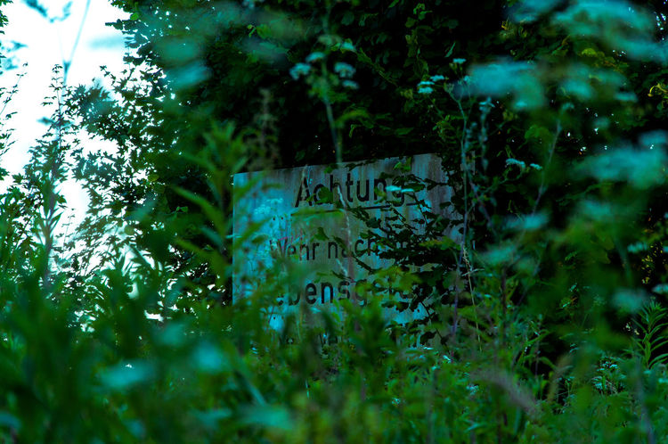 Caution Caution Sign Caution ⚠️ Green Schilder Sign Signs Tree Trees Warning Signs  Werne A.d. Lippe Achtung Forest Green Color Outdoors Plant Sadness Schild Selective Focus Sign Text Warning Warning Sign Warnschild Warnung