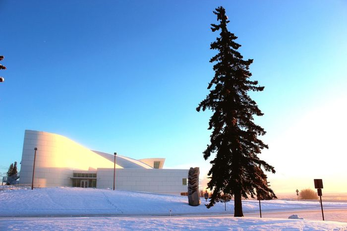 Winter Snow Blue Cold Temperature Clear Sky Built Structure Tree Architecture Building Exterior No People Outdoors Nature Sky Day Beauty In Nature EyeEmNewHere Museum Of The North Alaska University Of Alaska Tourist Destination Tourist Attraction  Tourism Fairbanks