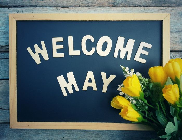 Blackboard with welcome may wooden text and flower on old wood table Timeline May Flower Happy Month Blackboard  Time Happiness Celebration Board Start Cheerful Countdown Smile Moment Retro Begin Love Nature Retro