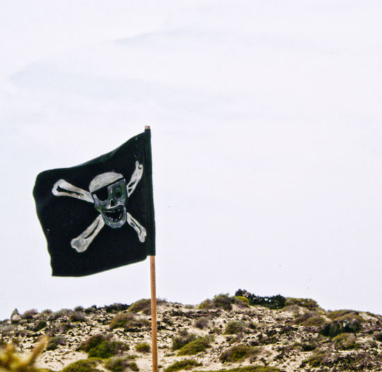 Pirate Flag Pirate Fotoshooting Sea And Sky Outdoors EyeEm Best Shots Day