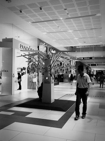 Pandora Samsung Tree Photography Blackandwhite