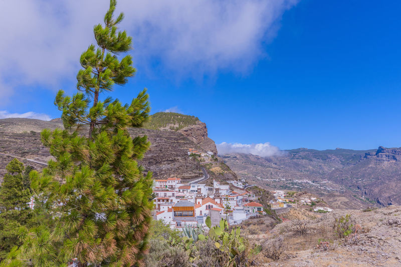 Around the gran canarian mountain Canarias Canary Islands Gran Canaria Gran Canary Island Holiday Landscape Photography Landscape_Collection Nature Nature Photography Travel Photography Traveling Travelling Trip Vacations Artenara Canary Daytrip Destination Destinations Landscape Landscape_photography Landscapes Mountain Nature_collection Travel Destinations