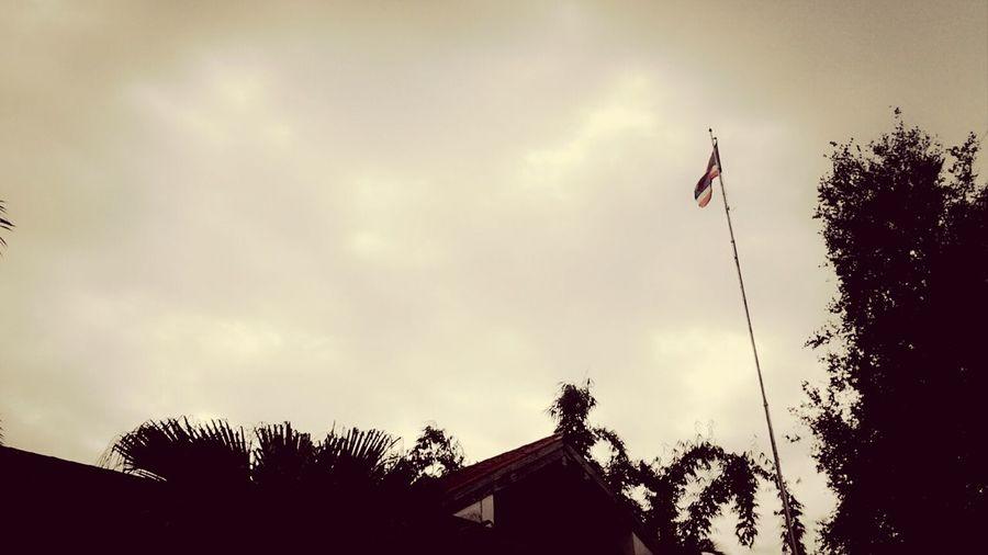 ทำงาน ฝนตั้งเค้า อากาศเย็นสบาย ท้องฟ้าของฉัน Unzeimer Photo Clouds And Sky Landscape