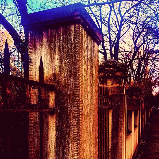 Zutritt verboten! Karlsruhe Zoo No Entry Wall Fence Dusk In The City Built Structure Architecture No People Day Outdoors Building Exterior Tree