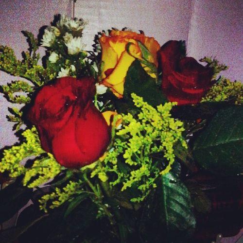 ♥♥♥ Regalo Amarillassonperfectas Rosas Rosasparaotrarosa meencantó minovio loamo