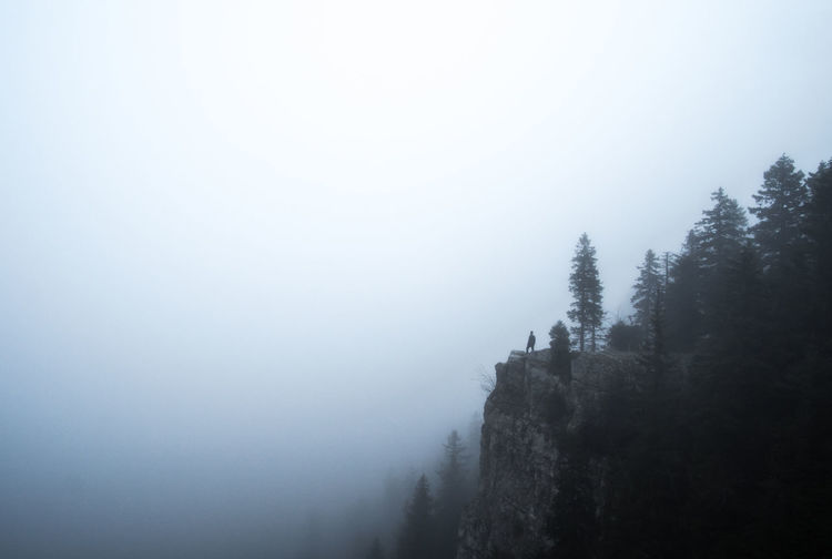 Trees on mountain against sky during foggy weather