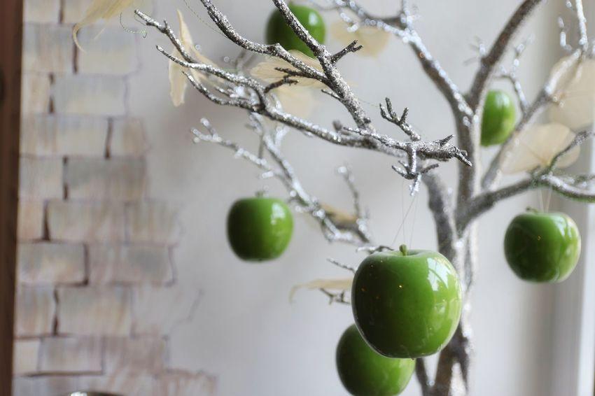 Hanging Green Color No People Tree Fruit Decorative Structure Decorating Apples Decorate Decorative Design Decoration