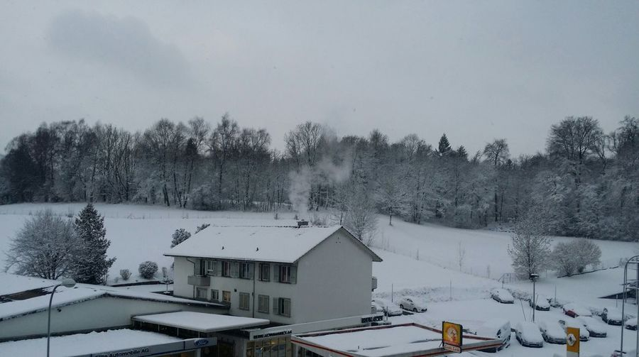 Snow Snowing ❄ Winter Cold Winter ❄⛄