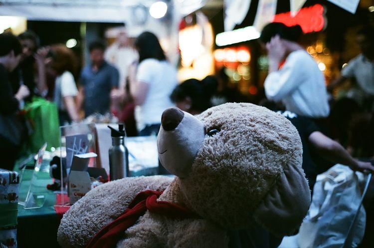 Stuffed Toy Teddy Bear Christmas Bazaar Gift Film Film Photography Nikon