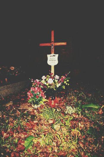 Halloween Liść Październik Listopad Jesień Woda Cmentarz Grub