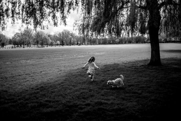 The Street Photographer - 2018 EyeEm Awards Animal Animal Themes Canine Child Childhood Dog Domestic Domestic Animals Field Full Length Grass Land Mammal Nature One Animal Outdoors Pet Owner Pets Plant Real People Tree Vertebrate Holiday Moments