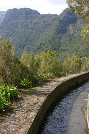 Beauty In Nature Connection Day Growth Landscape Lavada Leisure Activity Madeira Island Man-made Structure Mountain Mountain Range Nature No People Outdoors Pathway Plant Scenics Tranquil Scene Tranquility Tree Walking Water Watercourse