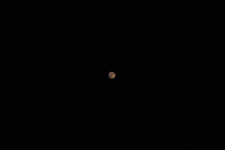 Moon Faraway