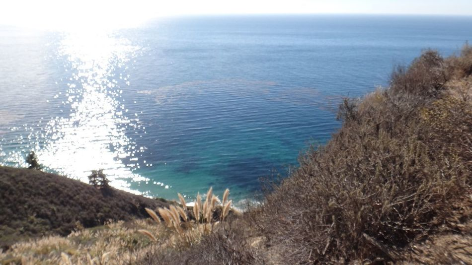 Big Sur California USA Sea Water Nature Tranquil Scene Tranquility Horizon Over Water California Dreamin Beauty In Nature Beach Scenics Day Outdoors No People Sky