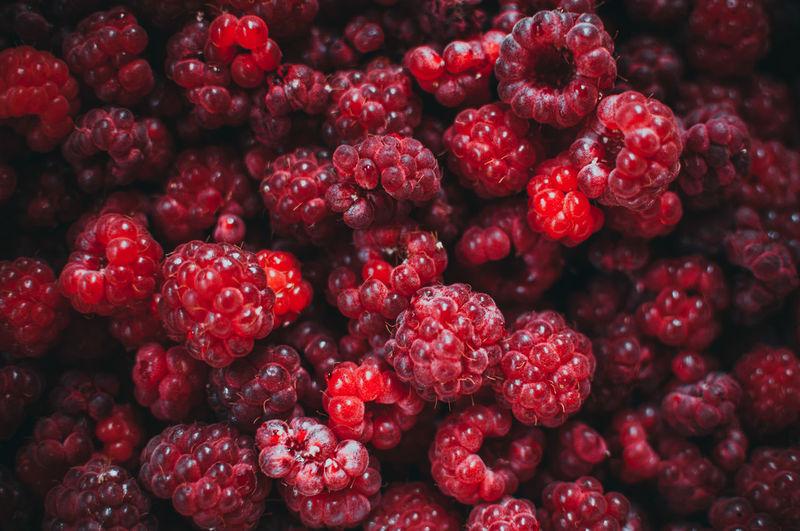 Raspberry fresh berry eco friendly background. macro photo food of raspberries.