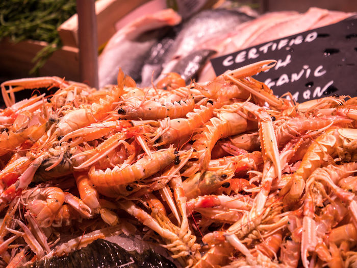 Close-up of shrimps at a fish market Shrimps Abundance Animal Close-up Crustacean Day Fish Market Food Food And Drink For Sale Freshness Healthy Eating Large Group Of Objects Lobster Market Market Stall No People Orange Color Prawn Retail  Seafood Shrimp - Seafood Wellbeing