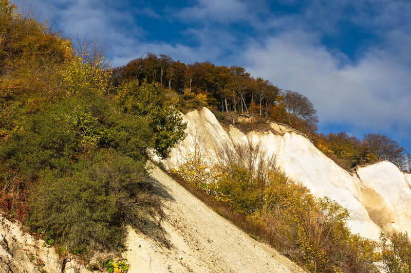 Baltic Sea coast on the island Moen in Denmark. Plant Cloud - Sky Tree Nature Scenics - Nature Beauty In Nature Day No People Tranquil Scene Environment Outdoors Moen Møen Klints Landscape Denmark Scandinavia Vacation Travel Destinations Travel Tourism Chalk Cliffs White Cliffs  Autumn Trees Forest
