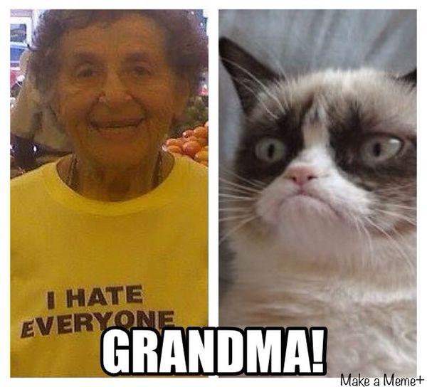 Grumpy Cat Grandma Funny Christmas