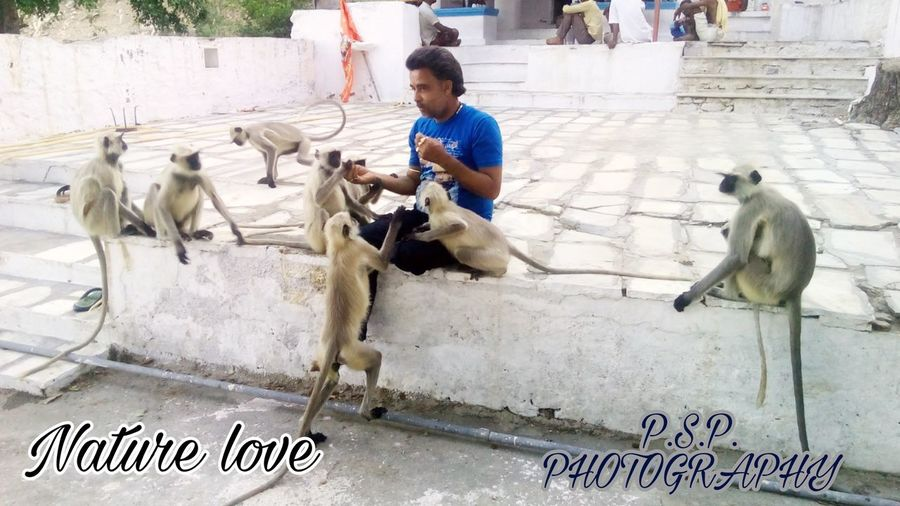 The Week On EyeEm Men,monkey,animallover,eat,food, Naturephotography Nature Lover Nature Is Art Friendship With Nature