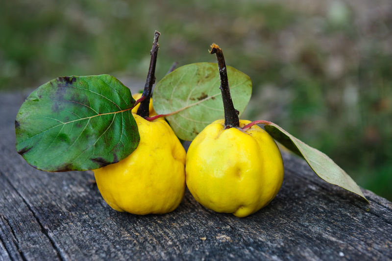 Close-up of quinces on wooden table