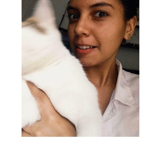 Déjate amar ! Cat Lesbian
