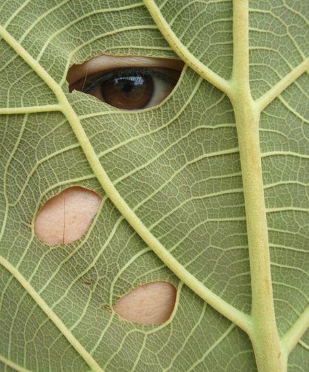 Close-up portrait of man on plant