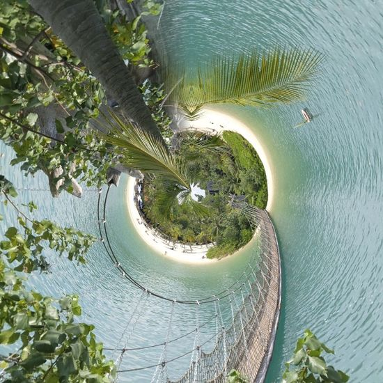 Beach High Angle View Sea Nature No People Travel Destinations Curve Tree Day Outdoors Scenics Beauty In Nature Vacations Water Fish-eye Lens Sky The Week On EyeEm