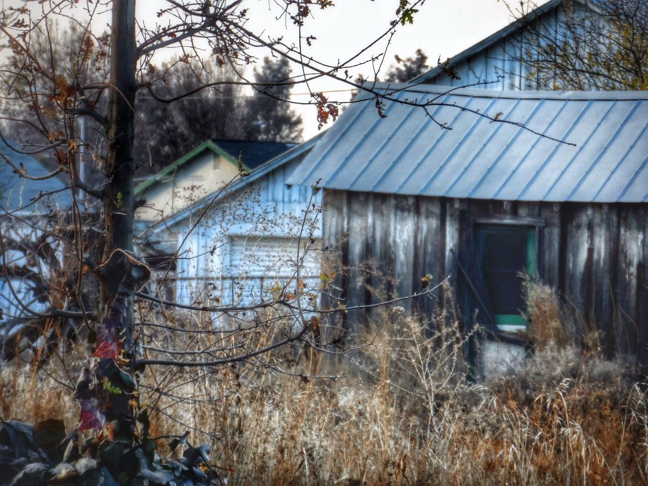 built structure, building exterior, architecture, house, tree, bare tree, outdoors, day, no people, winter, cold temperature, nature, sky