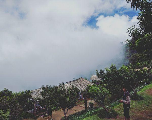 It's hazy Monjam Chiangmai Thailand Nature Trees Coulds And Sky Rainy Days