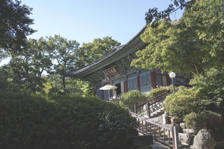 Architecture Beauty In Nature Buddhism Building Exterior Built Structure Day Growth House Korea Low Angle View Nature No People Outdoors Sky Tree