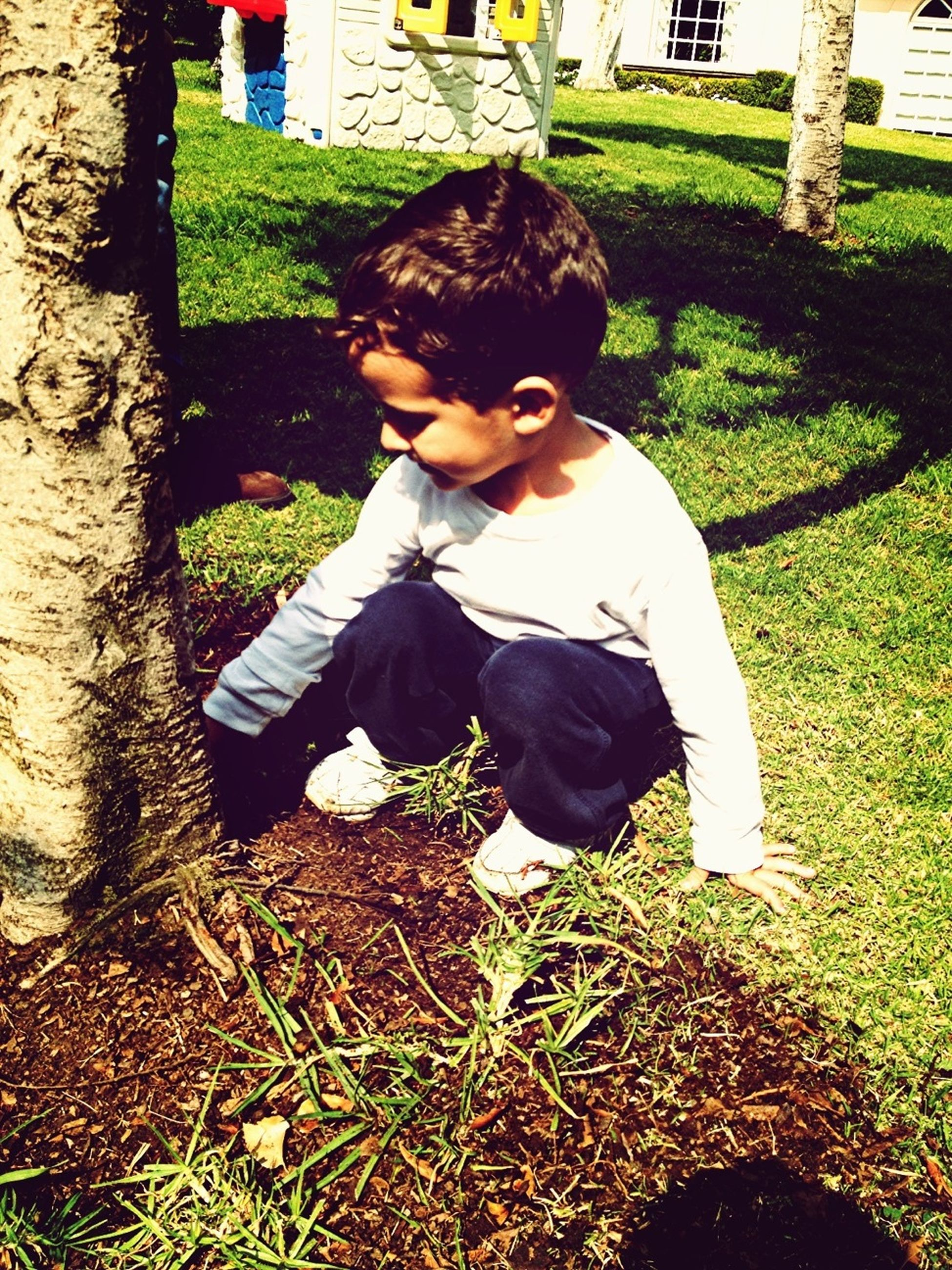 childhood, grass, full length, person, elementary age, lifestyles, casual clothing, leisure activity, boys, sitting, girls, park - man made space, innocence, relaxation, three quarter length, front or back yard, field, built structure