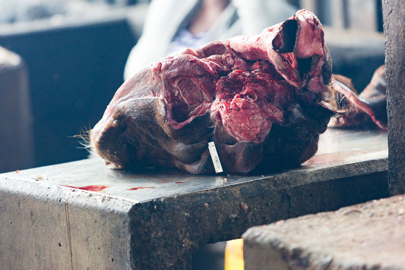 Close-up of butchered cow's head in market