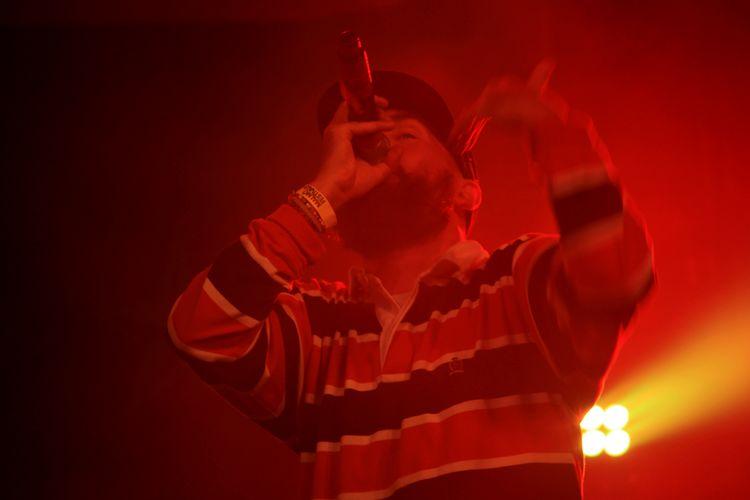 Sverige Sweden Vegan Reggae Rap 2016 Summer Festival Malmö Malmö Festivalen Promoe