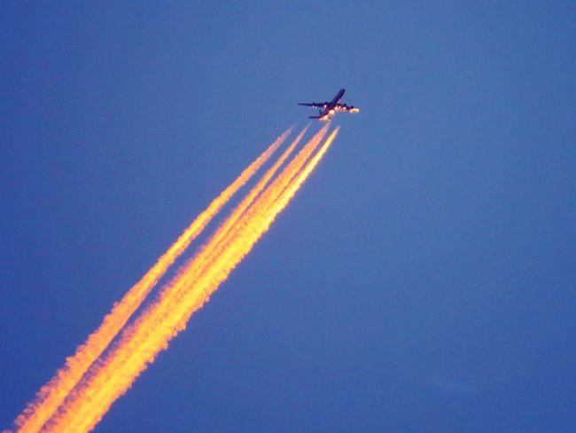 Cobalt Blue By Motorola Blue Sky Blue Nova Petrópolis Check This Out EyeEm Best Shots Sky Airplane