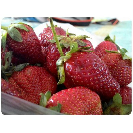 Red of Strawberry Strawberry Red Blood Fruit Lifestyle Music Metal Zenfone6 Metalcore Enjoying Life