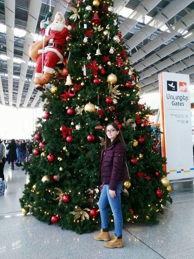 Christmas Tree Christmas Christmas Decoration Celebration Christmas Ornament Tree Decoration