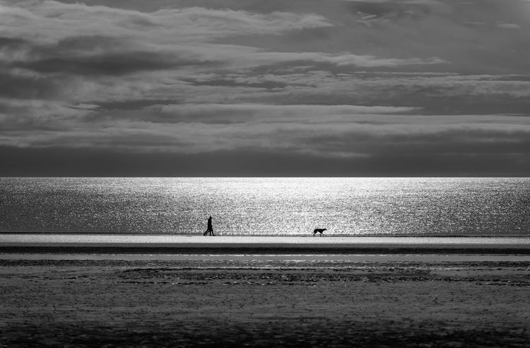 Beach Beachphotography Calm Cloud - Sky Dog Dog Friendly Beach Dog Walking Holiday Horizon Over Water Idyllic Nature Northumberland Outdoors Sea Seascape Shore Silhouette Silhouette Tourism Tranquil Scene Tranquility Travel Destinations Unrecognizable Person Vacations Water