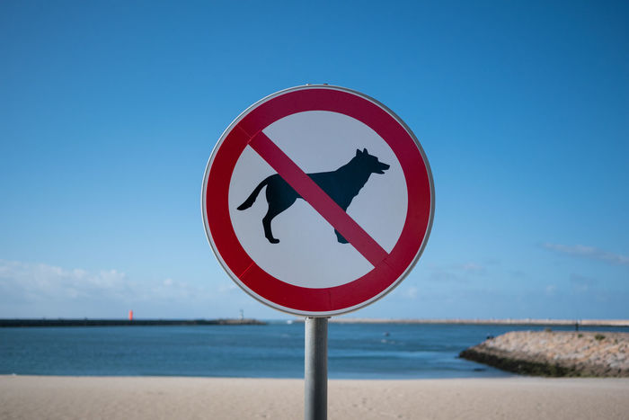 No dogs Animal Beach Copy Space Dog Dogs German Shepherd Nature No No Dogs No Dogs Allowed No People Nodogs Nodogsallowed Nodogshit Outdoors Pet Portugal Prohibition Sand Sign Signpost Signs Sky Water Fresh On Market 2016
