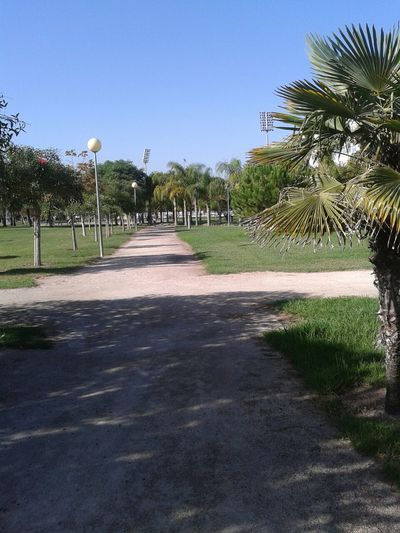 Autumn University Of Valencia University Campus Relaxing