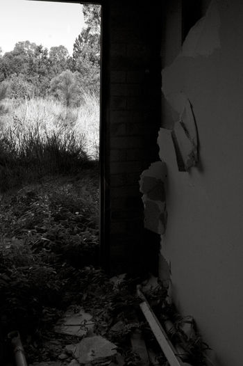 Abandoned Places Scary Places Whatcouldbe Pimpama Australia Black And White The EyeEm Collection Home Is Where The Art Is