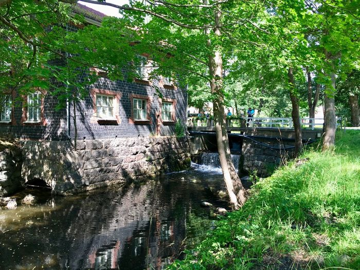 Fiskars Plant Growth Water Built Structure Nature Tree Day