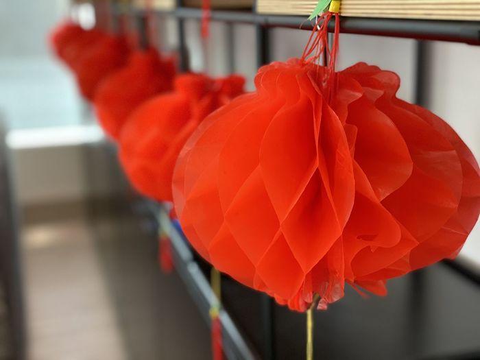 Close-up of red lanterns hanging outdoors