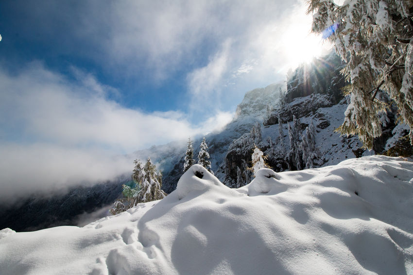Austria Beauty In Nature Cloud - Sky Cold Temperature Day Hiking Hikingadventures Karwendel Landscape Low Angle View Mountain Nature No People Outdoors Scenics Sky Snow Snowshoe Sun Sunlight Tranquility Tree Winter